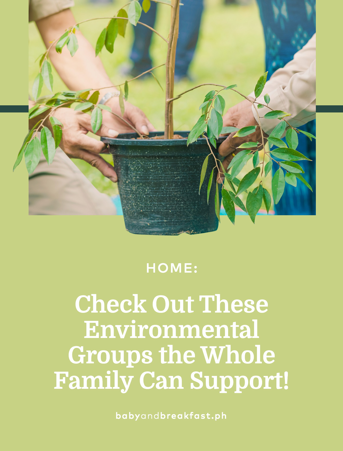 Check Out These Environmental Groups the Whole Family Can Support!